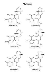Food Testing & Analysis - Aflatoxins